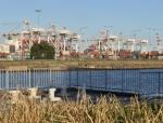 Stevedore cranes