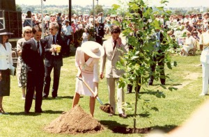 royal tree planting